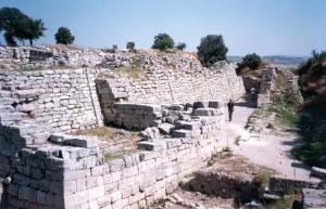 troy-walls