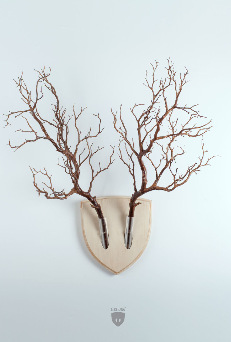 Turn-plants-into-vegan-antler-wall-mount-with-this-cool-design2__880
