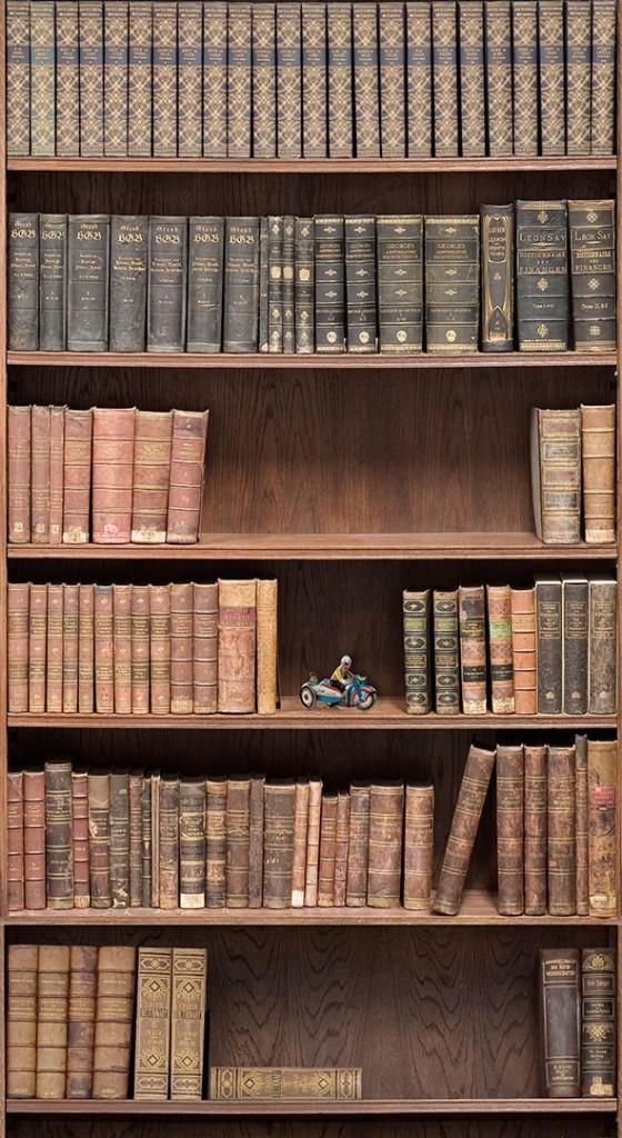 Bookshelf_Boutique_Faux_Wallpaper_design_by_Milton_King_db52a846-7580-449f-8c2f-4f49baa978aa_2048x2048